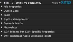 The XML Metadata Panel in Premiere Pro CC subsumes some of the other metadata schemas.